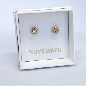 💌 Petits Bijoux Convertible Circle Studs-November